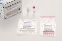 Mycoplasma Test-Kit IC